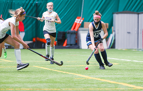 field hockey leagues